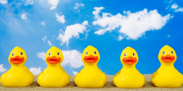 Are all your ducks in a row? Getting your project fixes right